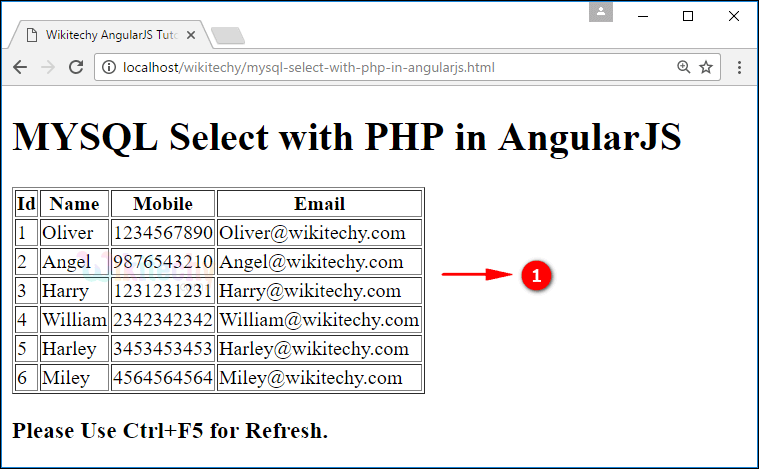 Sample Output for AngularJS select using PHP Mysql