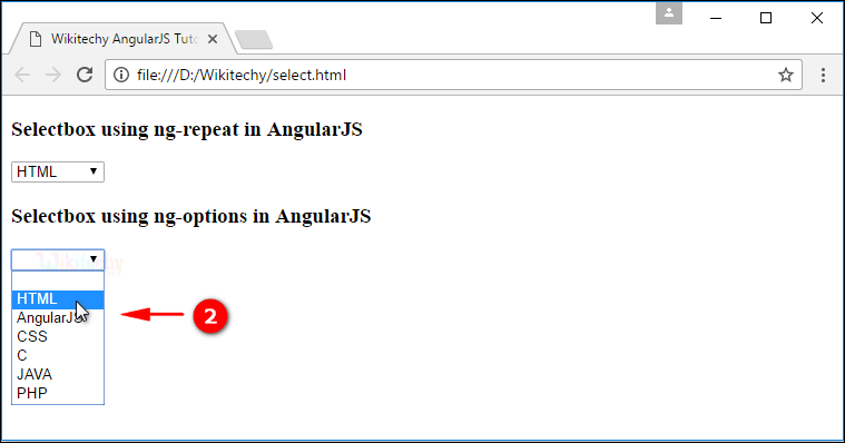 Sample Output for AngularJS Select Box