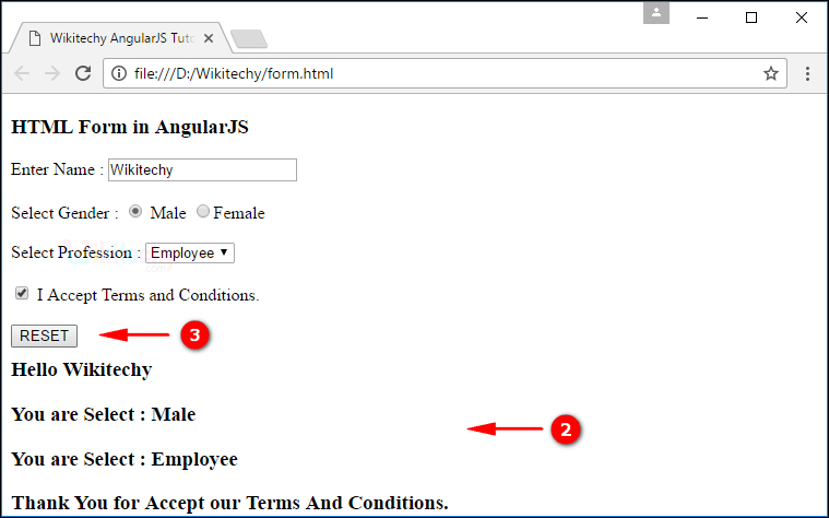 Sample Output2 for AngularJS Forms