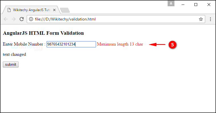 Sample Output4 for AngularJS Validation