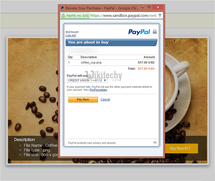 paypal-express-checkout-for-digital-goods-click-for-buy