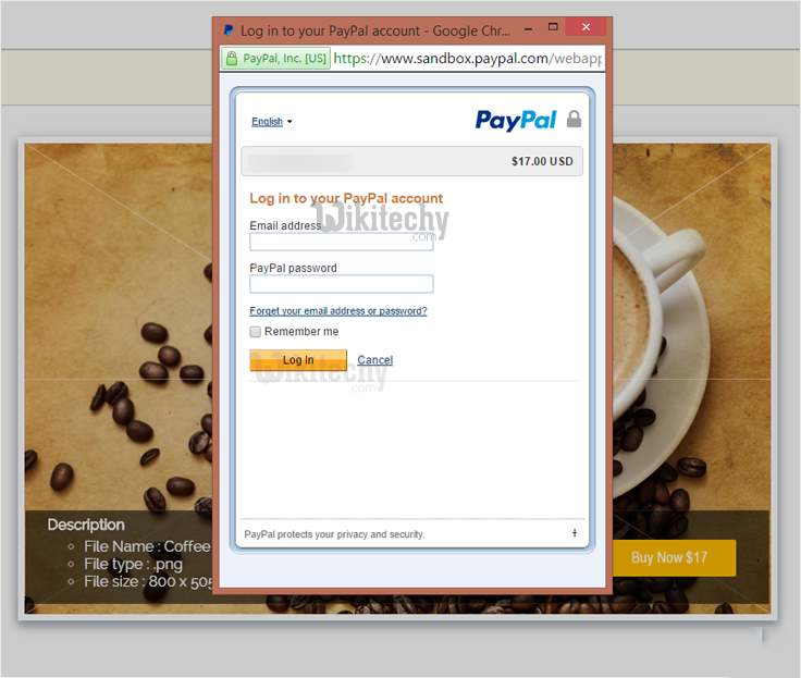 paypal-express-checkout-for-digital-goods-login-via-paypal