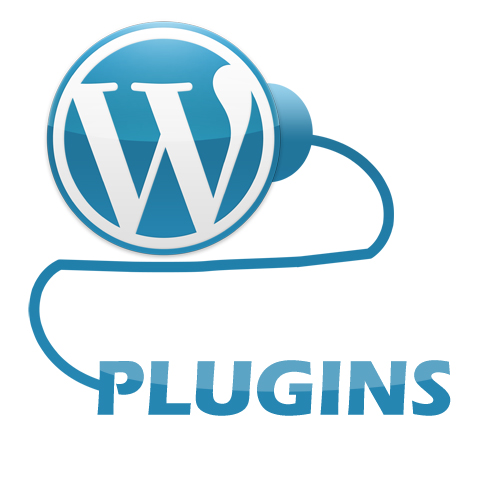 Top 13 Must Have WordPress Plugins - Wordpress - Most of our website are hosted by WordPress. But if we proceed deeply inside WordPress we need plugin.