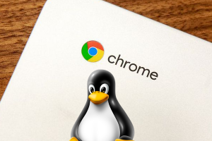 Linux on Chromebook