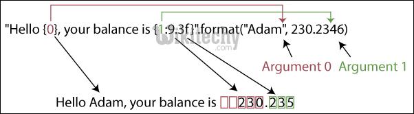 python format positional argument